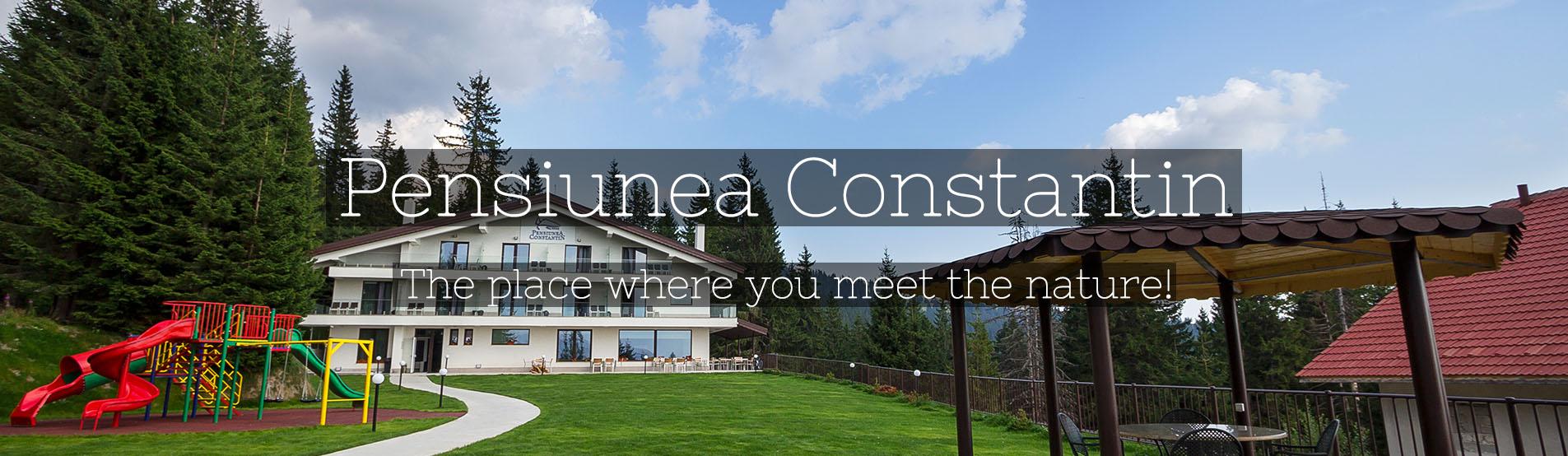 Pensiunea Constantin - Accommodation in Ranca